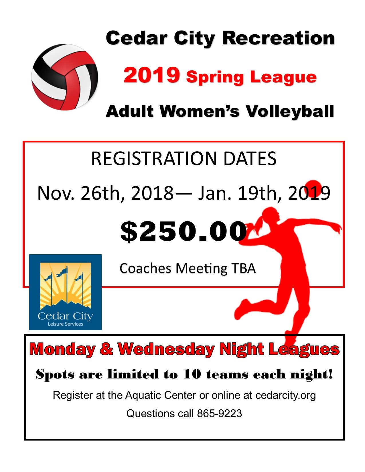 Adult Volleyball Spring 2019 FLYER