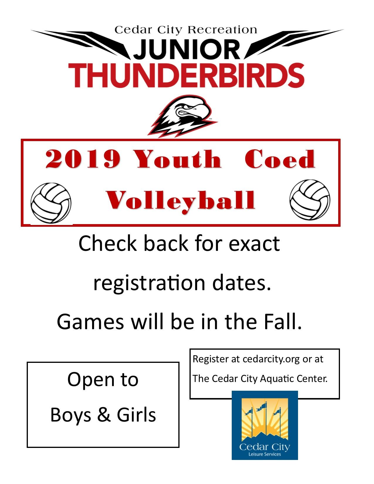 2019 Youth Volleyball FLYER