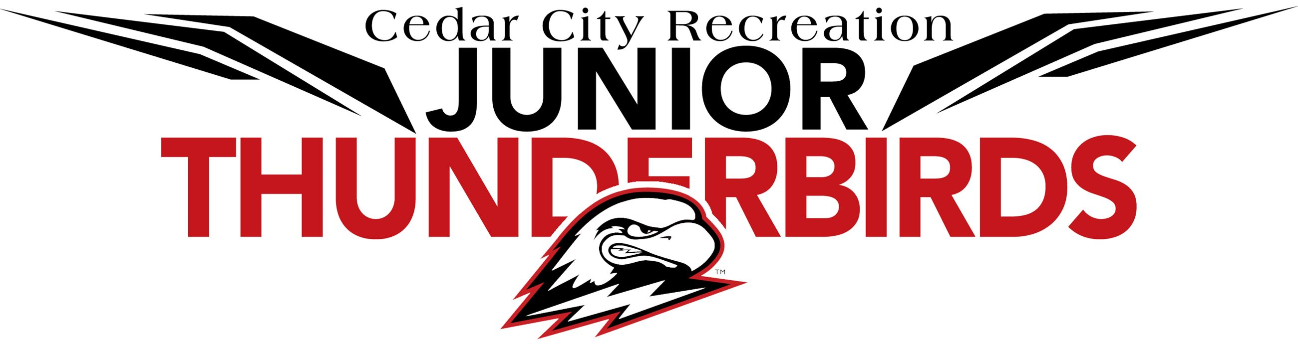 Junior Thunderbirds Logo